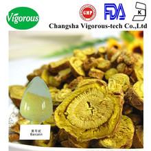 radix scutellaria extract powder/scutellaria baicalensis georgi extract/high quality scutellaria baicalensis extract
