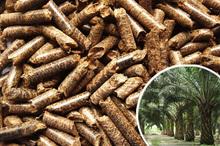 Palm bunch pellets