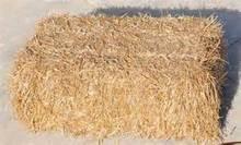 hay chopper for animal feed