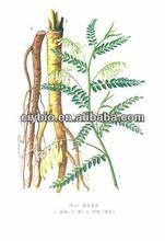 Anti-arrhythmias Coptis Chinensis Extract/ Rhizoma Coptidis Berberine Hydrochloride 98%