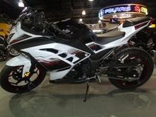 2014 Kwasaki Ninja 300