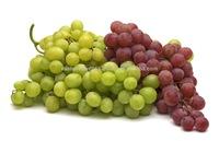 Fresh Table Grapes US origin