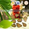 natural herbal medicine Black aconite from GMP manufacturer