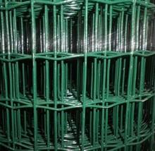 Pvc Coated Euro Fence(professional manufacturer)