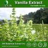 Halal&Kosher Pure Vanilla Extract Powder/Vanilla Bean Extract /Vanilla Powder