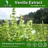 Halal&Kosher Pure Vanilla Extract Powder/Vanilla Bean Extract /Vanilla Powder