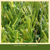 hot-selling landscaping grass for garden