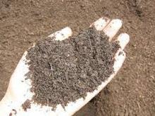 Organic Nitrogenous Fertilizers use as fertilizer