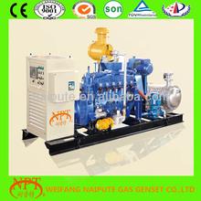 Top brand 80kva gas generator for sale