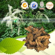 100% NATURAL herbal medicine Rhizoma Cimicifugae from GMP manufacturer