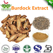 Direct Manufacturer Supply Burdock Root Extract