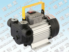 AC 220V electric oil pump / electric transfer pump / AC 220V electric fuel pump