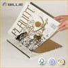 Hotest Popular Advertising Brochure Samples Printing in China