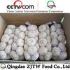 China cheap fresh garlic price