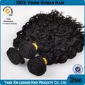 china grossista preço de fábrica qualidade superior não transformados cabelo cacheado natural fotos
