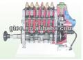 El electrónicamente- controlado de diapositivas de la válvula de la bomba de inyección de modelo de la disección