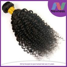 Brazilian Virgin Remy Afro Kinky Curly Human Velvet Hair Extensions