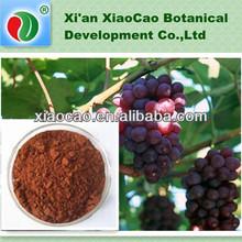 High Quality Grape Seed P.E.