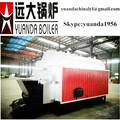 Biomass hot water heater