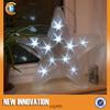 10L3D Star Shape Light Led Street Motif Light