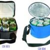 Cooler Bags-6