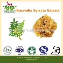 ISO HACCP Factory Supply Mastic Gum Extract Mastic Acid