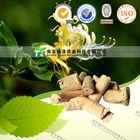 China manufacturer herb medicine Caulis Lonicerae