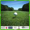 hot sell sports golf ball