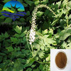 Top Quality From 11 Years experience manufacture Black Cohosh