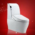 sanitarios de cerámica lavado de una sola pieza de baño de la cámara oculta en el baño