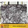 Heaven Bird white marble with black veins tile slabs