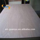 Supply poplar,hardwood and combi core plywood