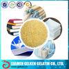 Technical gelatin powder for industry glue adhesive glue
