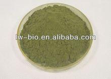 Powdered Echinacea Purpurea extract, CAS 70831-56-0 Cichoric Acid