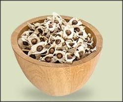 Life Organic Moringa Seeds