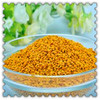Kosher certification pure rape bee pollen in a competitive prices give you beauty and health