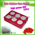 5wx126 sıcak yeni ürünler 2013 çiftlik isimleri led lamba büyümek