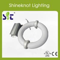 High lumen 100v~300v induction lamps 80w energy saving lamp better led lamp plant grow light 5years warranty