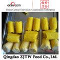 de maíz dulce congelado en iqf mazorca