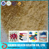 Industrial animal skin gelatin additives as adhesive/ technical glue