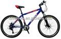 26'' MTB/moto/montagna bicicletta 26er cinese