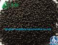 Fertilizantes orgânicos 8-8-8