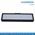evergrow it2080 spettro completo corallo marino barriera corallina a led acquario