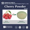 100% water soluble natural beverage cherry juice powder