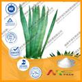 Serenoa repens/100% natural extracto de saw palmetto./saw palmetto semillas./extracto de saw palmetto