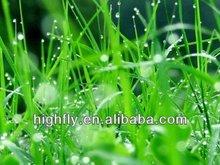 Eco- solvente papel fotográfico brilhante