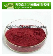 Dried cranberry extract powder, 100% Natural extracts Cranberry Extract 5%, 15%, 25%, 30%, 50% Proanthocyanidins/Anthocyanins