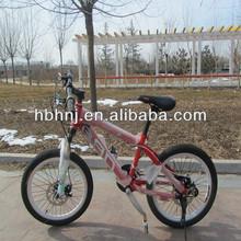 supply giant bicycle mountain bike