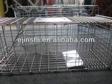 hot sale zinc plated mouse trap cage OEM accept