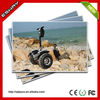 2014 best seller!Well appreciated off road electric chariot scooter,fiik electric skateboard bring pleasure